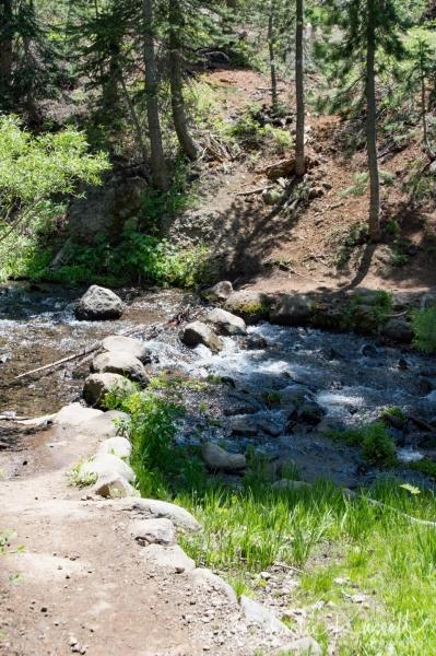 Big Meadow trail towards Dardanelles Lake