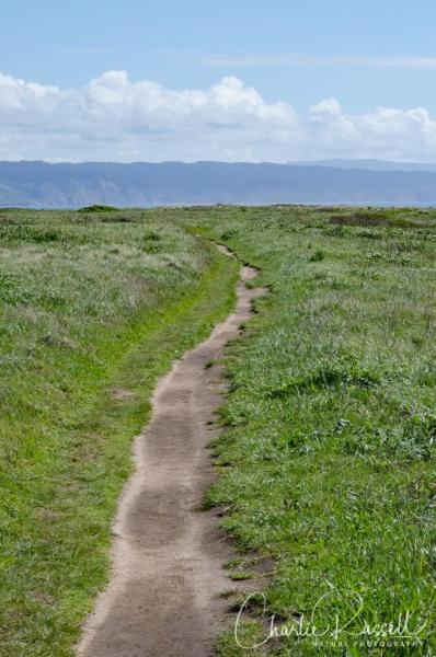 Chimney Rock trail at Pt Reyes
