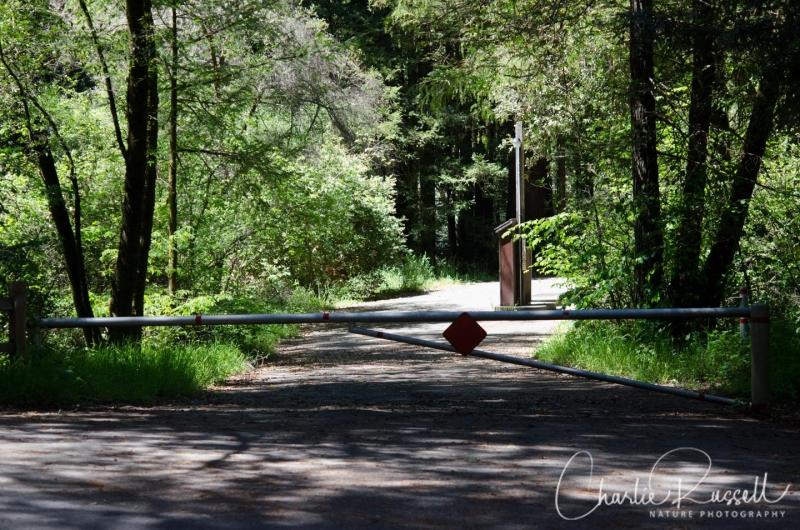 Camp Taylor trailhead