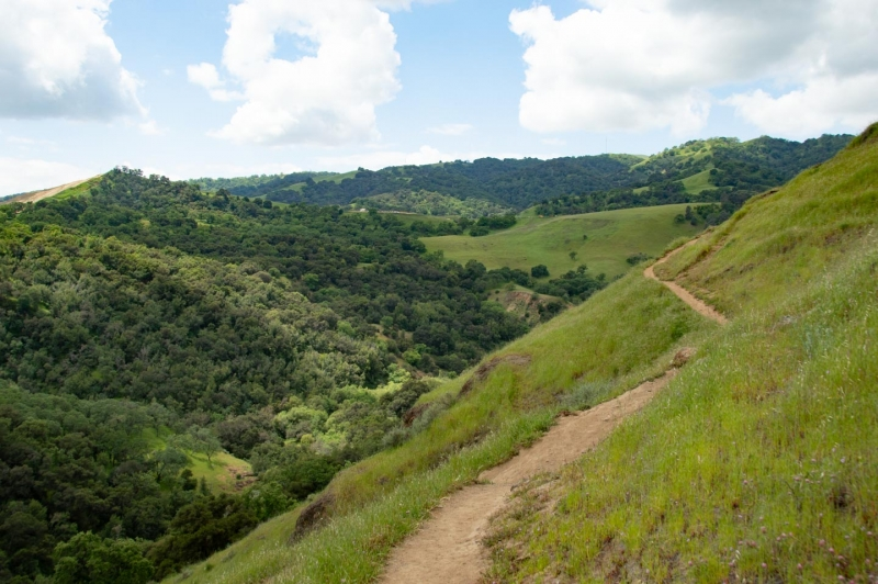 Sunol Regional Wilderness Canyon View Trail
