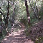 Early part of trail