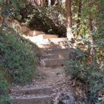 Steps up the steep part