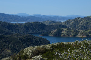 Lake Berryessa from Blue Ridge Loop Trail