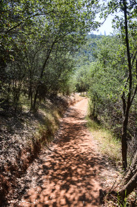 Trail away from railroad bed