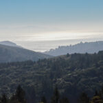 Ocean View from Dipsea Trail near Muir Woods