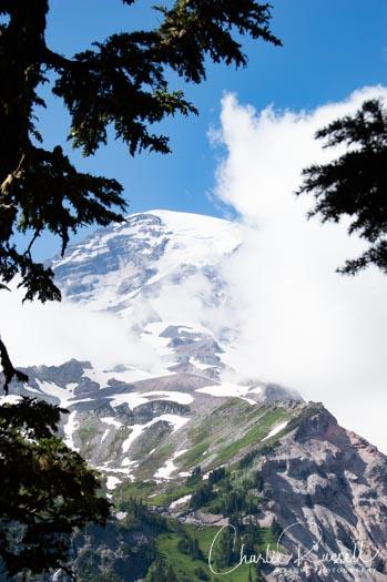 Mount Rainier Nisqually Vista