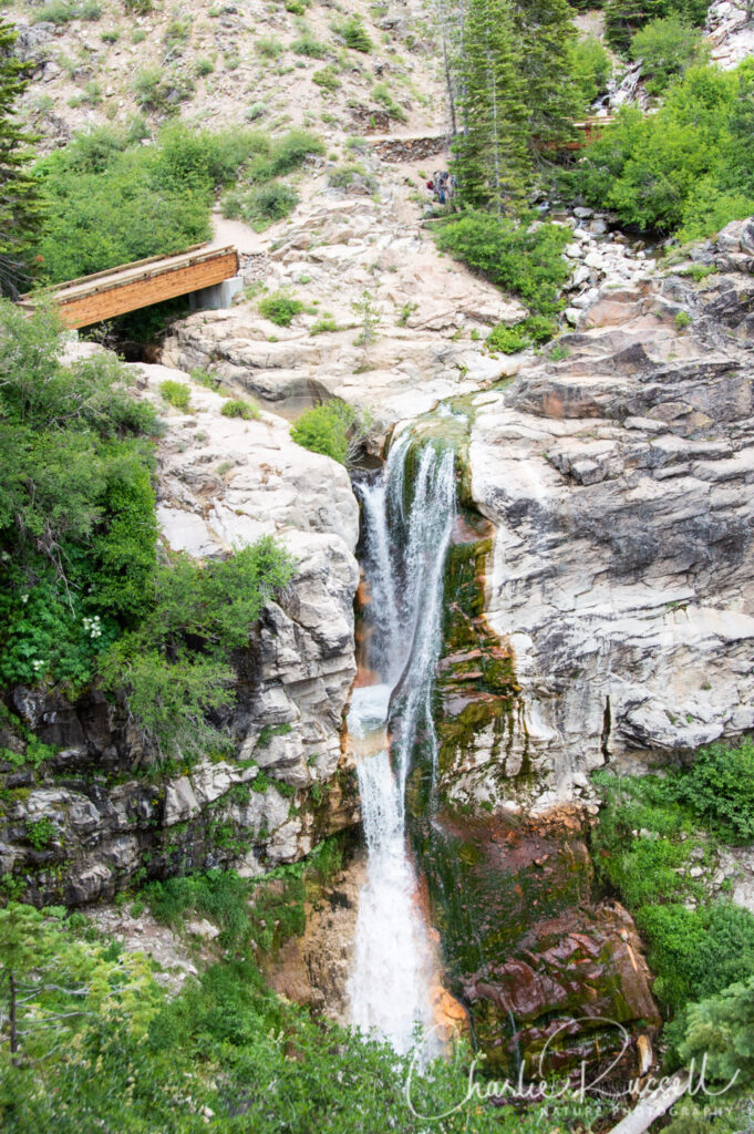 Mill Creek Falls trail, Mill Creek Falls from the viewpoint