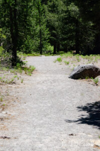 Start of the trail is a slight incline, a broad gravel/sand path
