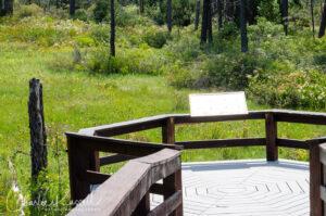 Eight Dollar Mountain Botanical Wayside. Boardwalk over the fen