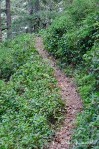 Tie trail