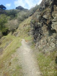 Yolanda Trail as it runs across the hillside