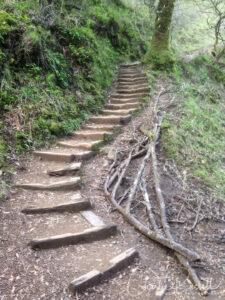 Gertrude Orr Trail, steps as you go along Phoenix lake