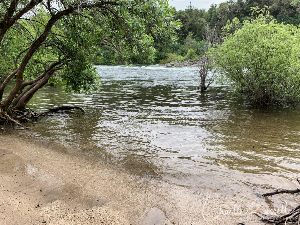 Dave Moore Nature Trail, beach on south fork of the American River