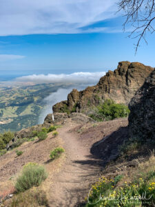 Mount Diablo Mary Bowerman trail