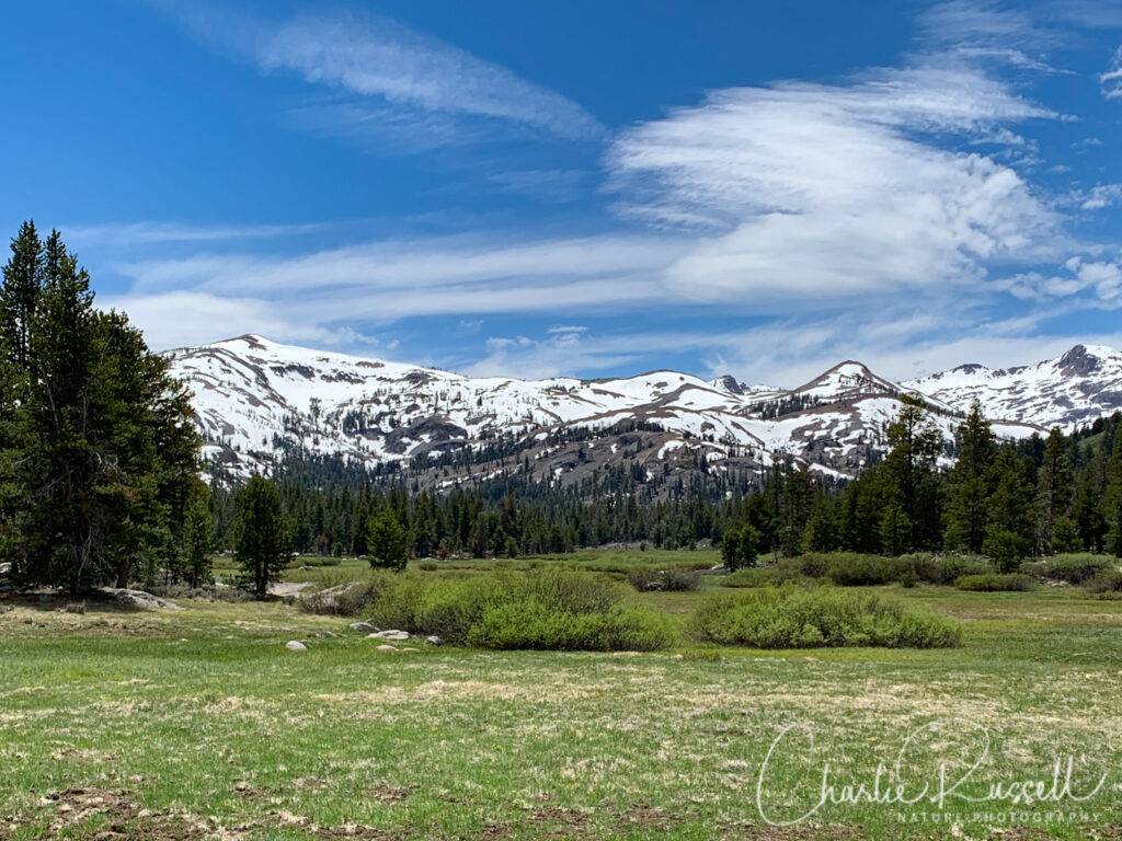 Snow-capped mountains around the meadow in Charity Valley