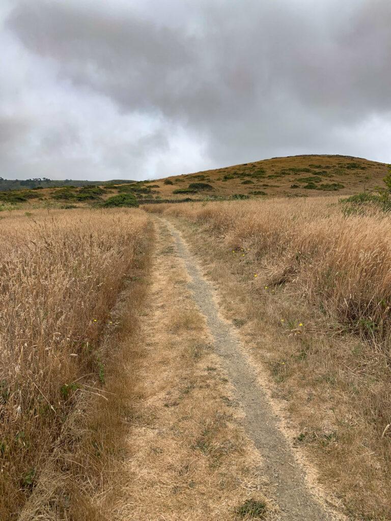 Point Reyes Drakes Estero trail